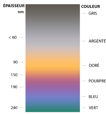 code-couleur-sections_02